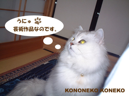 この猫仔猫-バニラ157-